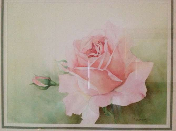"PEACH ROSE WITH BUDS, Watercolour , 25 1/4""x 21 1/4"" (framed: Same), $$425.0000"