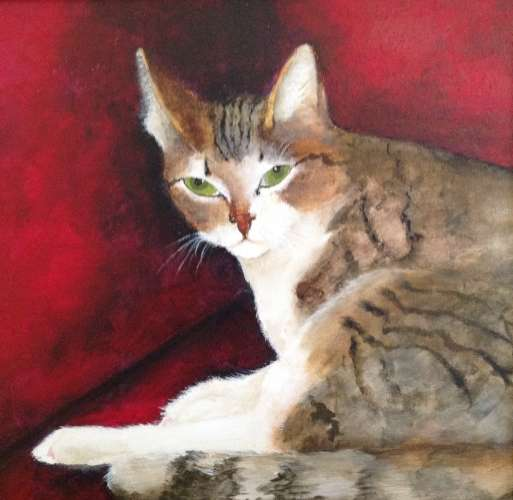 "Cat on Crimson, Acrylic, 19""X19"" (framed: 19""x19""), $$400.0000"