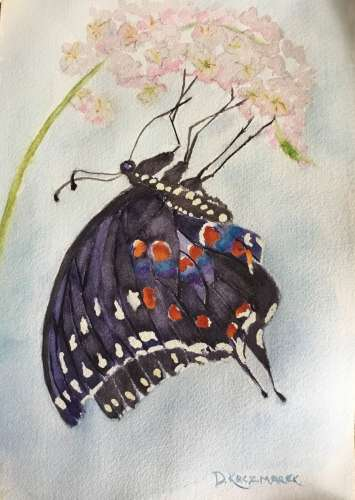 "Clinging Butterfly, Watercolour, 12 3/4"" X 17"" (framed: See above), $$275.0000"