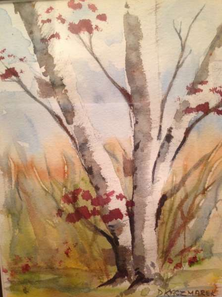 Fall White Birches